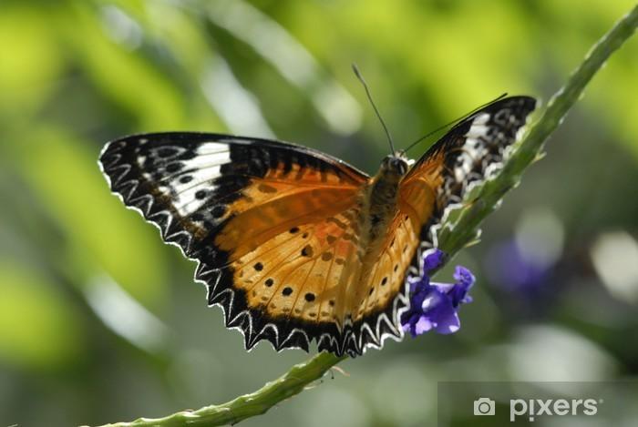 Sticker Pixerstick Farfalla - Autres Autres