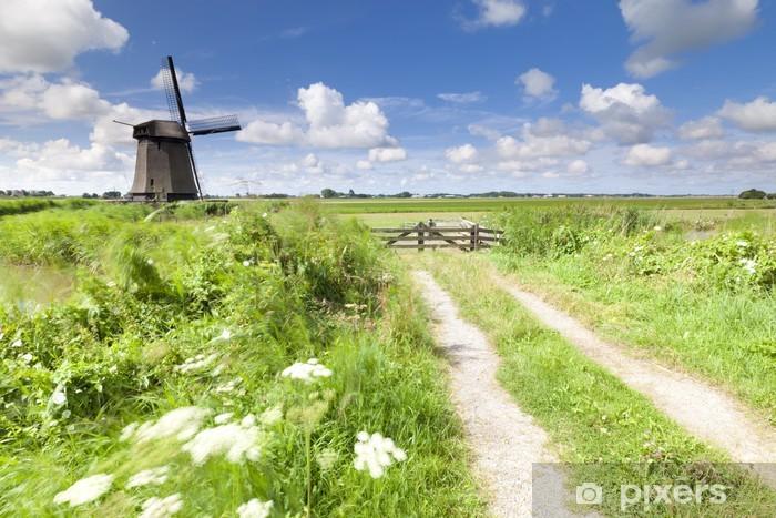 Fototapeta winylowa Wiatrak holenderski w świeżym zielonym polu latem - Pory roku