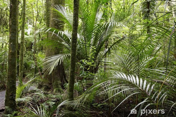 Carta Da Parati Foresta Tropicale : Carta da parati foresta tropicale u pixers viviamo per il