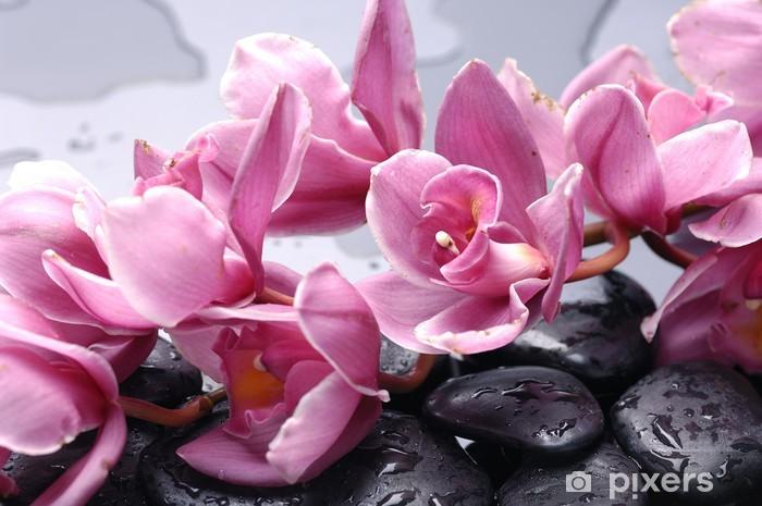 Vinyl Fotobehang Set van cattleyaorchidee bloem en steen met water druppels - Thema's