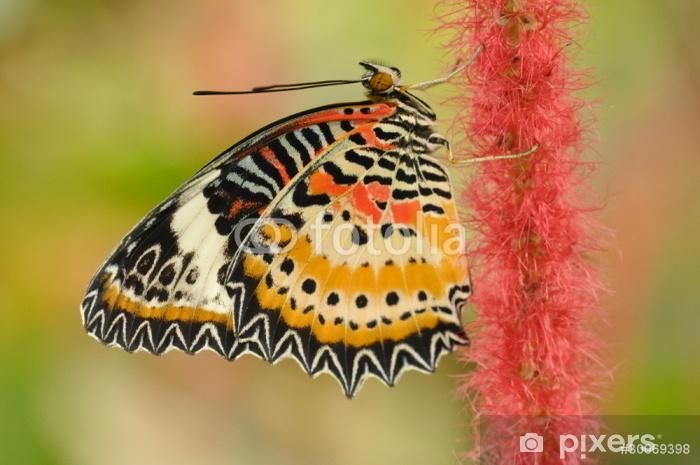 Sticker Pixerstick Papillon sur une fleur rouge - Saisons