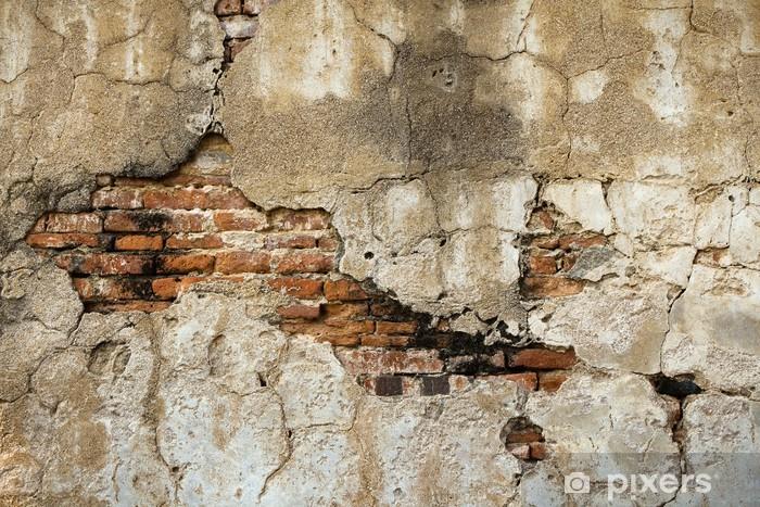 Fotomural Estándar Romper los viejos muros de ladrillo en el interior - Temas