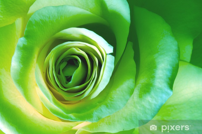 Sticker Pixerstick Rose verte - Thèmes