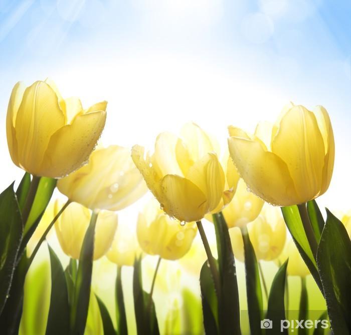 Plakat Sztuki dzikie kwiaty pokryte rosą w słońcu - Tematy