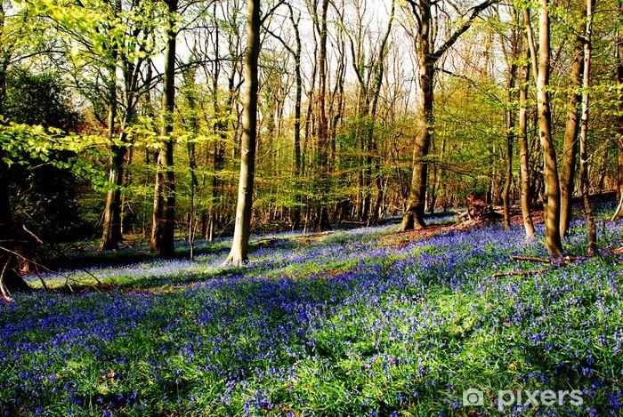 bluebells Table & Desk Veneer - Forests
