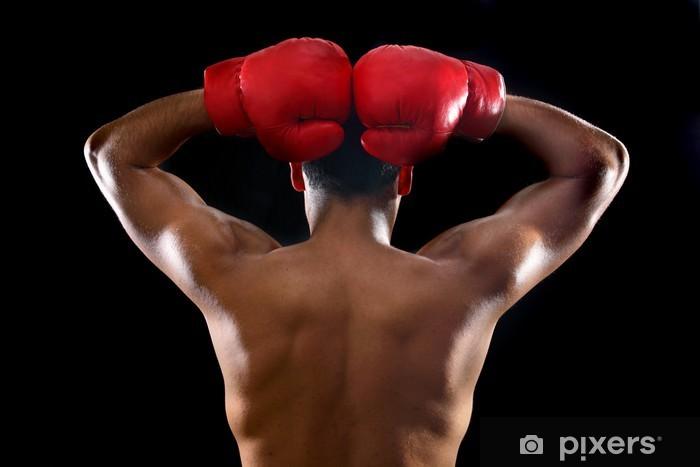 boxer Pixerstick Sticker - Themes