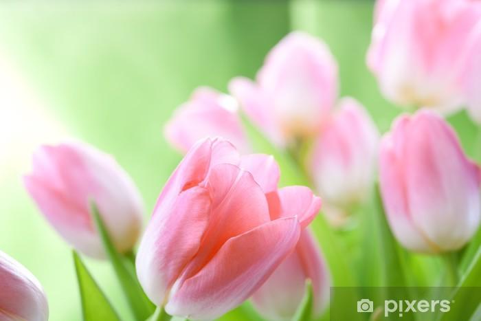 Papier peint vinyle Fleurs Tulipes - Thèmes