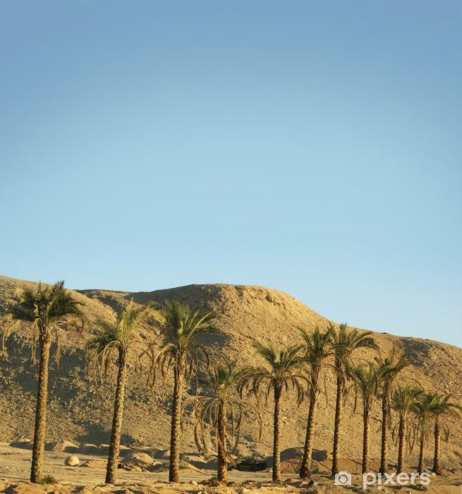 Papier peint vinyle Une belle sud fond du désert avec des palmiers - Thèmes