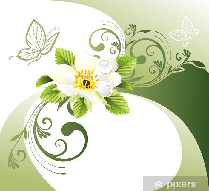 Carta Da Parati Sfondo Verde Con Fiori E Farfalle Pixers