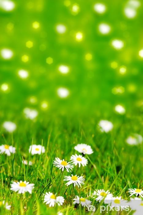 Papier peint vinyle Prairie nature soleil - Fleurs