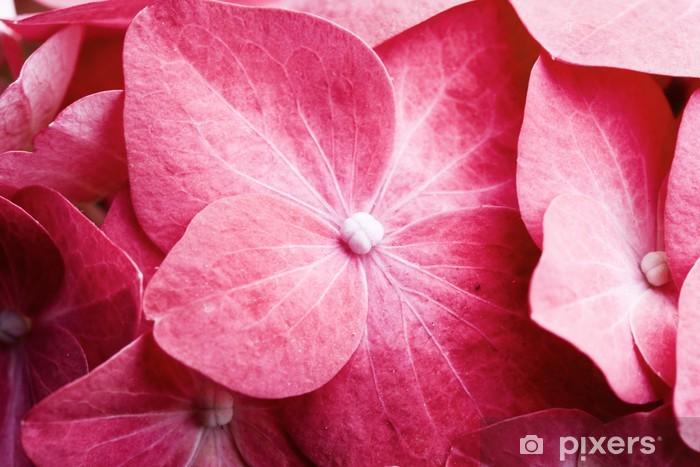 Pink hortensia Pixerstick Sticker - Flowers