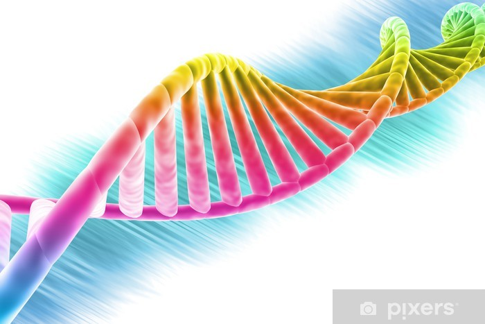 Vinilo Pixerstick Cadena de ADN brillante y colorido - Fondos