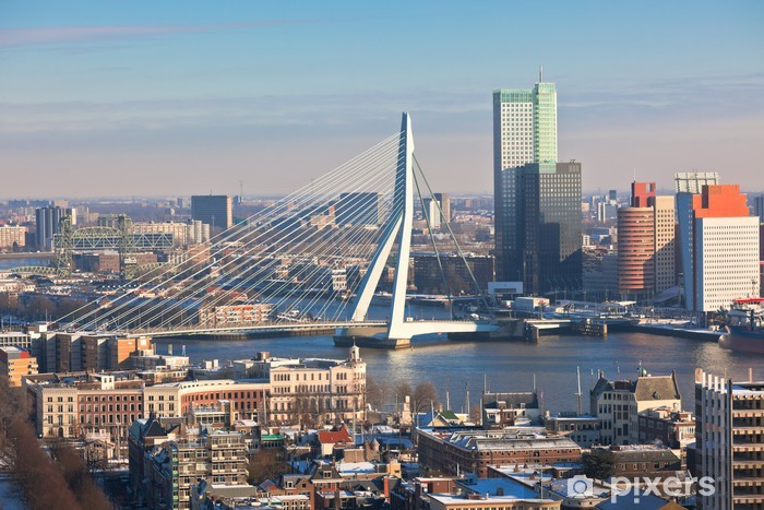 Rotterdam view from Euromast tower Vinyl Wall Mural - Themes