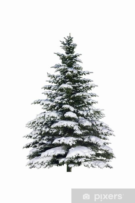 Fotomural Estándar Spruce en la nieve - Celebraciones internacionales