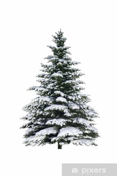 Naklejka Pixerstick Świerk w śniegu - Święta międzynarodowe