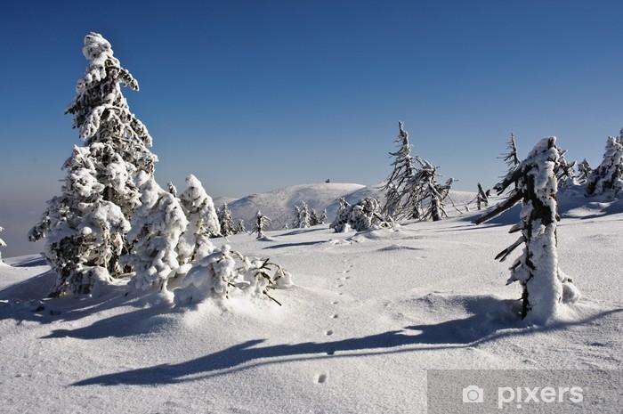 Naklejka Pixerstick Sceneria zimowa - Wakacje