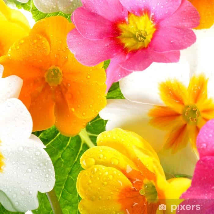 Naklejka Pixerstick Kwiaty - Pory roku