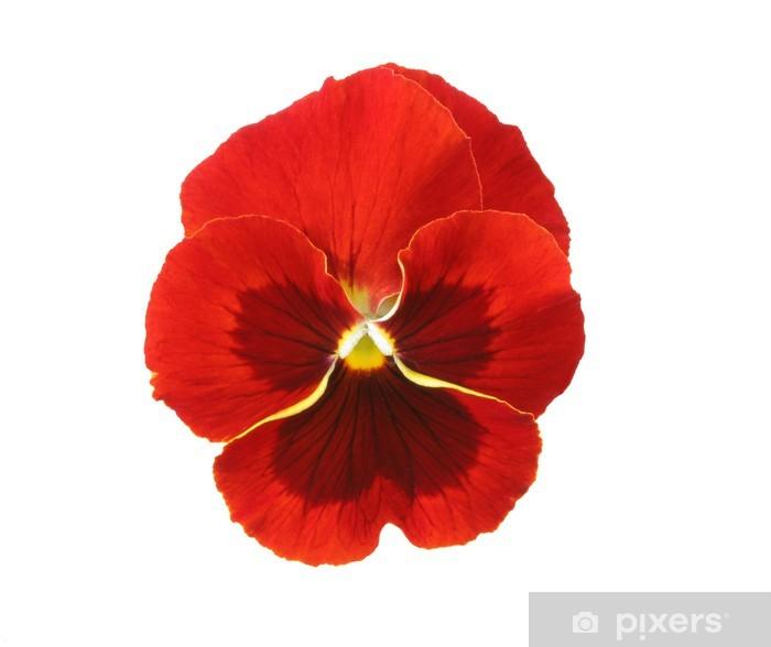 Póster Elementos de diseño: rojo del pensamiento - Flores