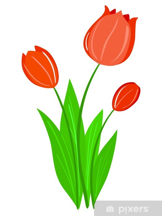 tulip vector wall mural pixers we live to change tulip vector wall mural pixers we live to change