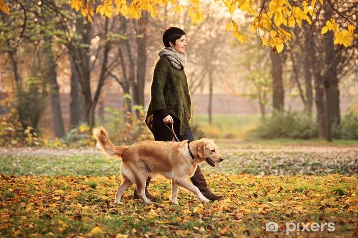 Nálepka Pixerstick Dívka a její pes chůzi v parku na podzim - Témata