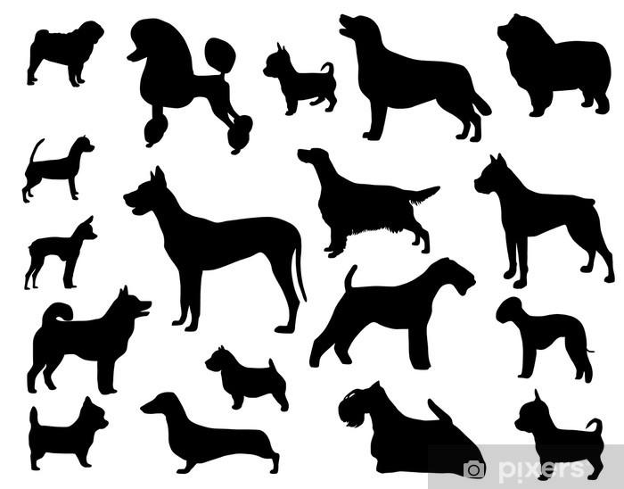 Fotomural Estándar Razas de perros - Mamíferos