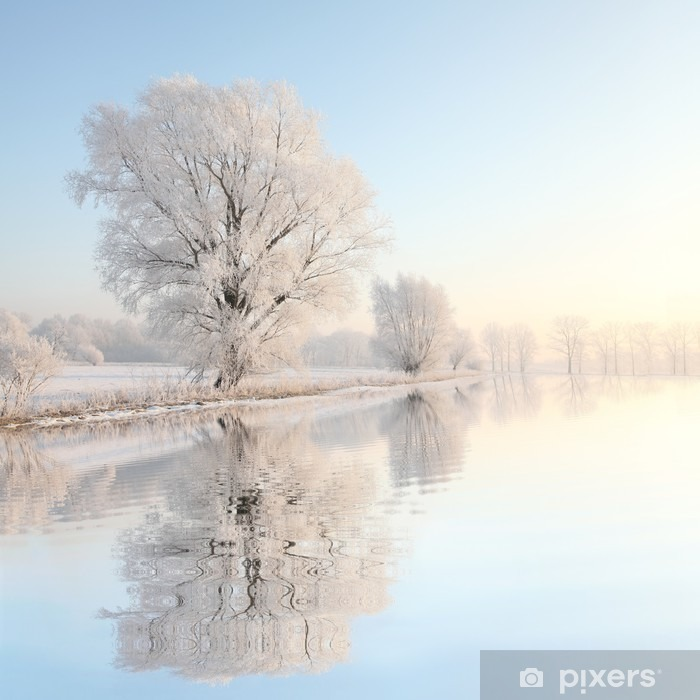 Fotomural Estándar Árbol invierno Frosty contra un cielo azul con reflejo en el agua - Estilos
