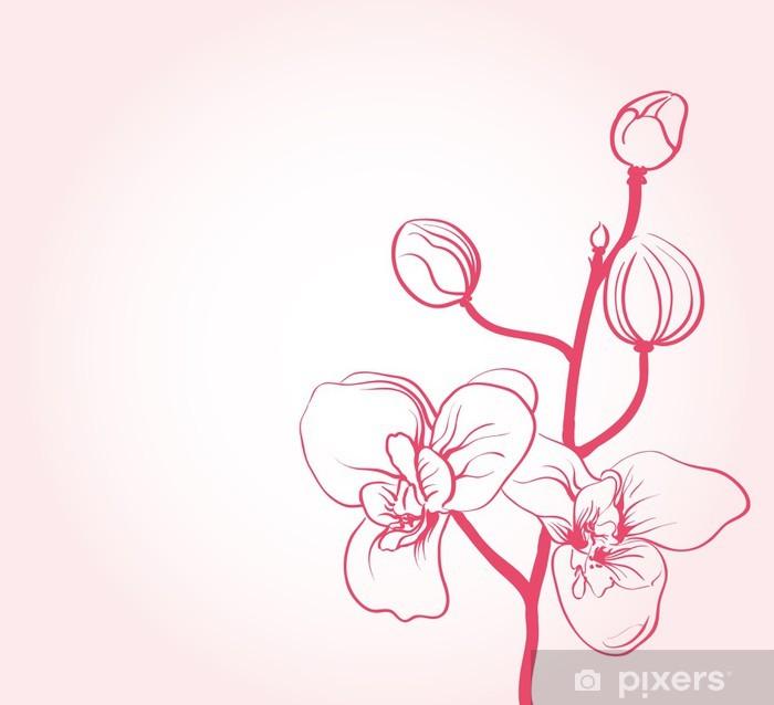 Fototapeta Pozadi S Sakura Kvetiny Kresleni Pixers Zijeme Pro Zmenu