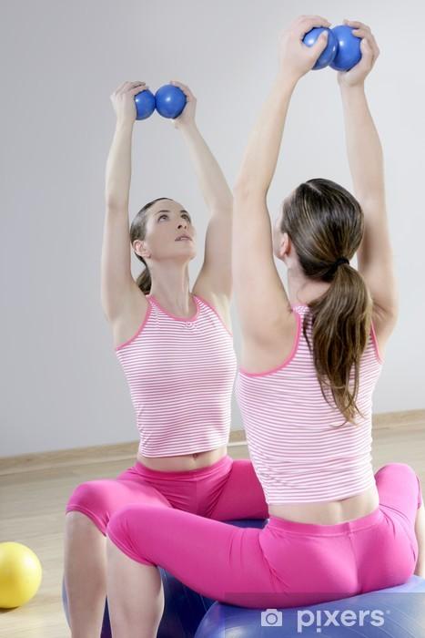 Papier peint Miroir salle de gym pilates femme tonification du sport boules  salle de gym 0d5726d1520