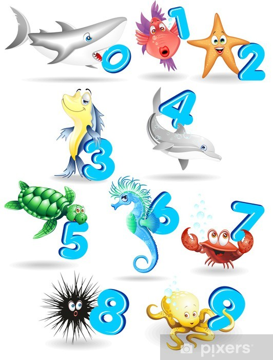 Papier peint vinyle Animali del Mare Cartoon e Numeri-marines Animaux avec des numéros - Destin