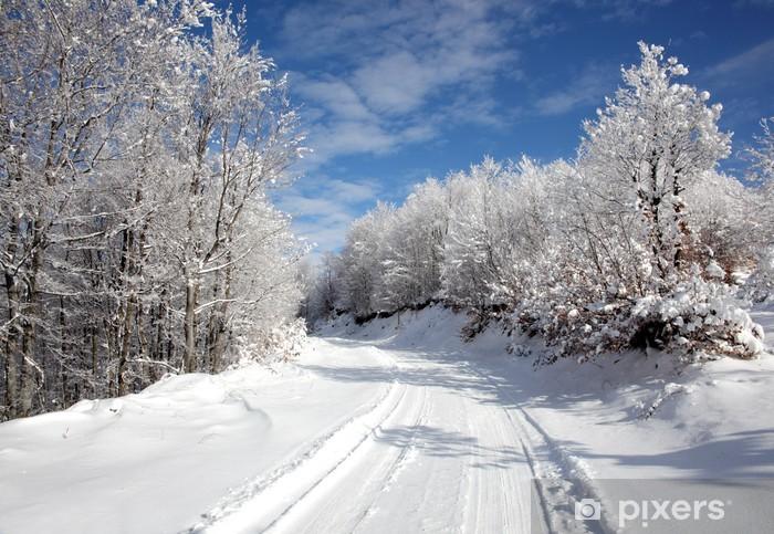 Fototapete Winter Strasse In Den Wald Am Blauen Himmel Pixers