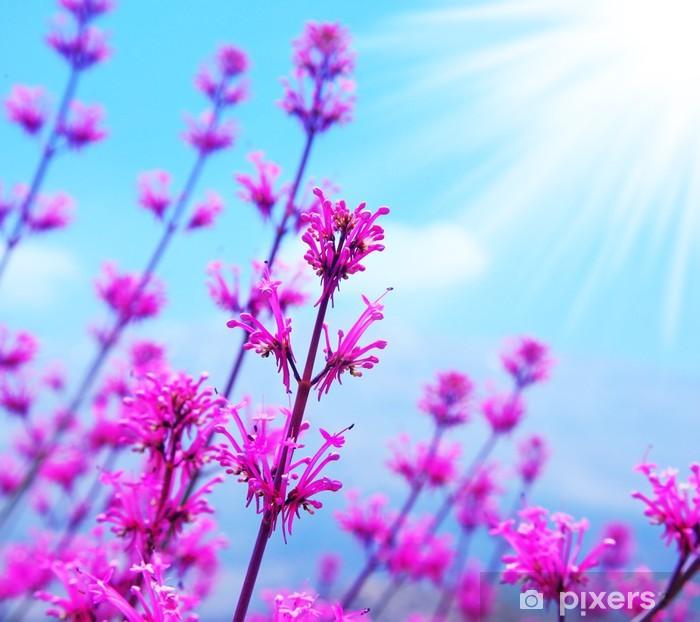 Adesivo Sfondo Fiore Di Primavera Pixers Viviamo Per Il Cambiamento