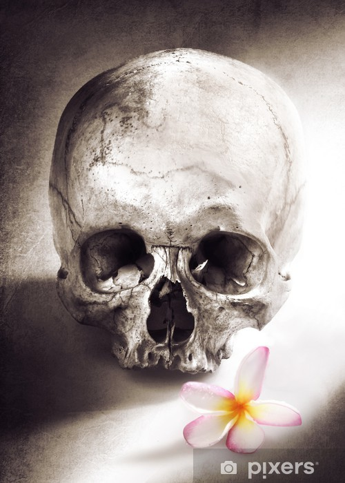 Naklejka Pixerstick Umrzeć z miłości - Życie