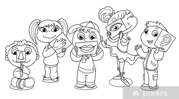 fotobehang kinderen illustreert de 5 zintuigen. • pixers® - we leven