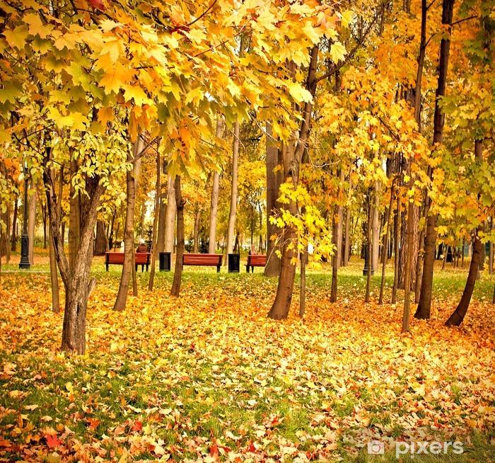 Fotomural Estándar Vívida parque bosque amarillo - Construcciones públicas