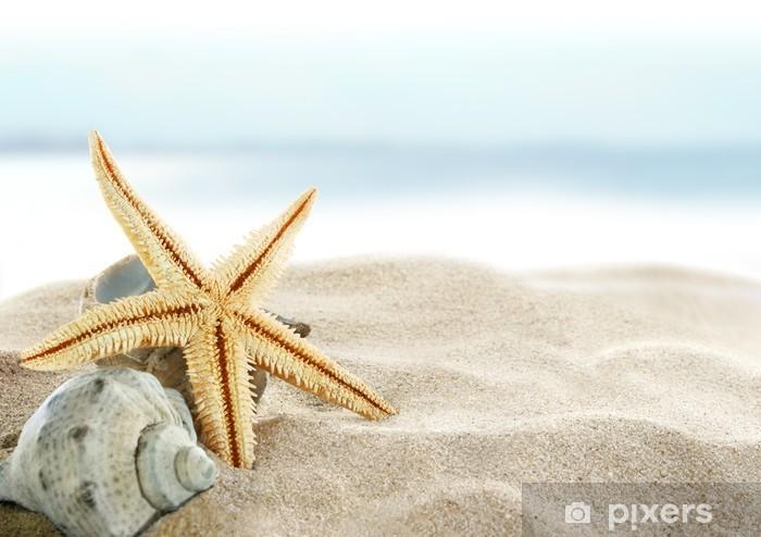 Afwasbaar Fotobehang Zeester op het strand -