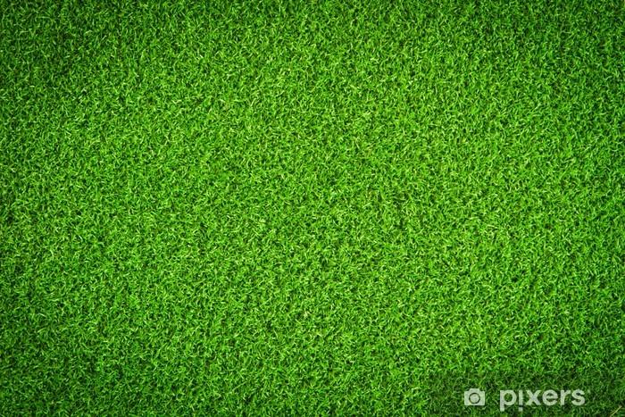Fototapeta winylowa Trawa zielona dziedzinie - Tła