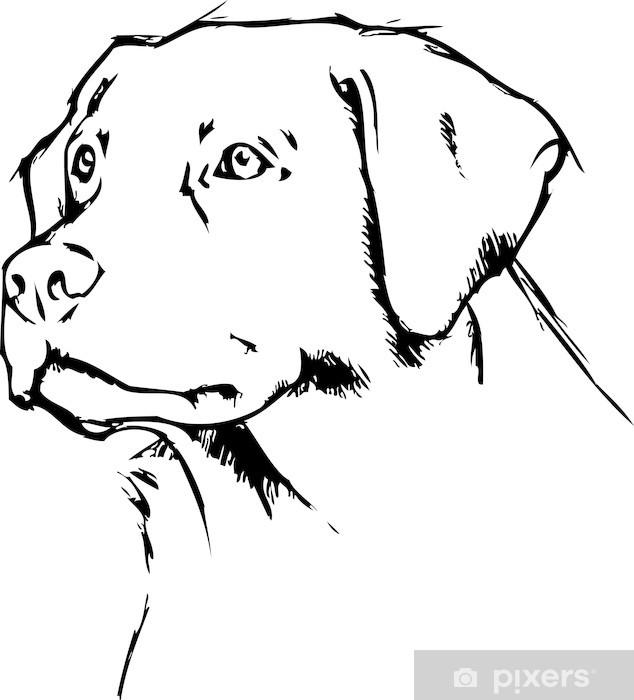 Vinyl Fotobehang Labrador Retriever Scribble - Muursticker