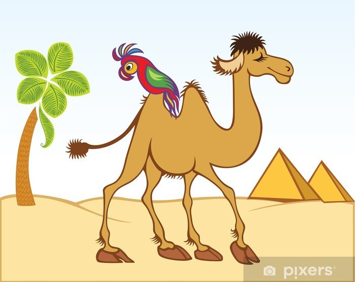 Cartoon Camel And Parrot In Front Of Pyramids Sticker Pixers We Live To Change