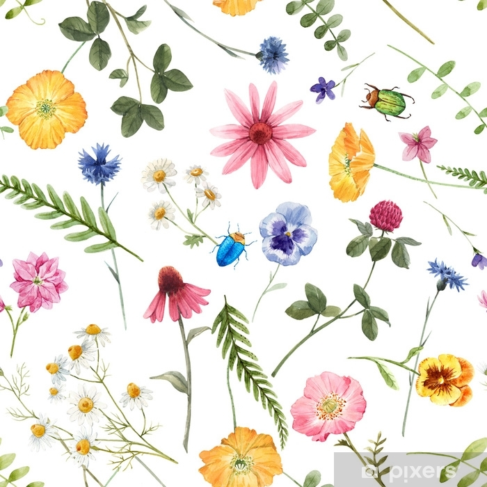 Beautiful floral summer seamless pattern with watercolor hand drawn field wild flowers. Stock illustration. Vinyl Wall Mural - Graphic Resources