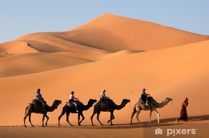 camel caravan in the sahara desert Vinyl Wall Mural - Desert
