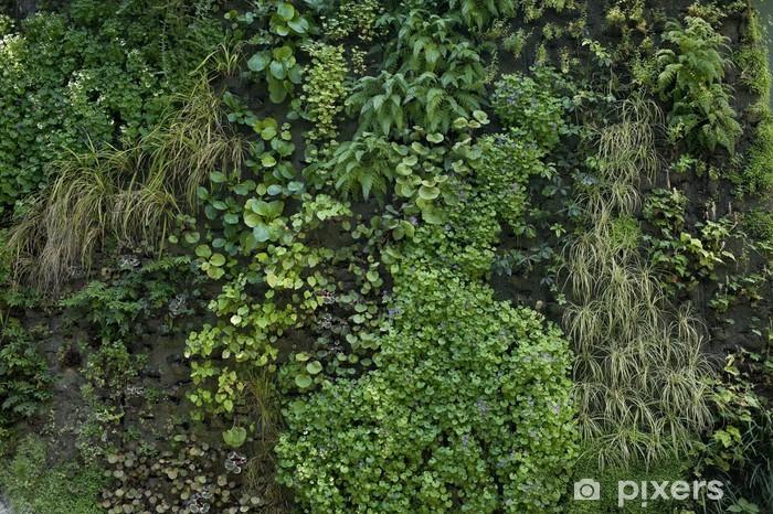 Papier Peint Mur Vegetal 4907 Pixers Nous Vivons Pour Changer