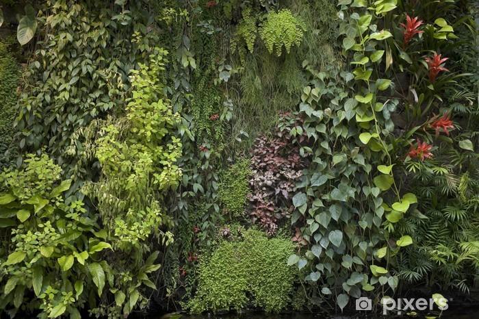 Papier Peint Mur Vegetal 4911 Pixers Nous Vivons Pour Changer