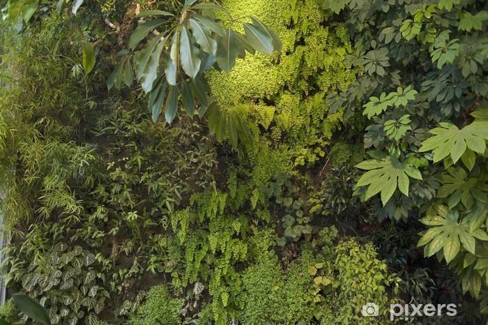 Papier Peint Mur Vegetal 4914 Pixers Nous Vivons Pour Changer