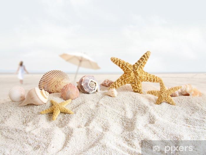 Zelfklevend Fotobehang Zeesterren en schelpen op het strand -