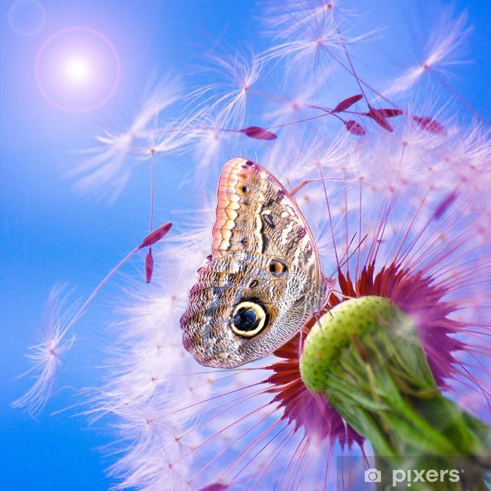 Poster Pissenlit avec papillon - Thèmes