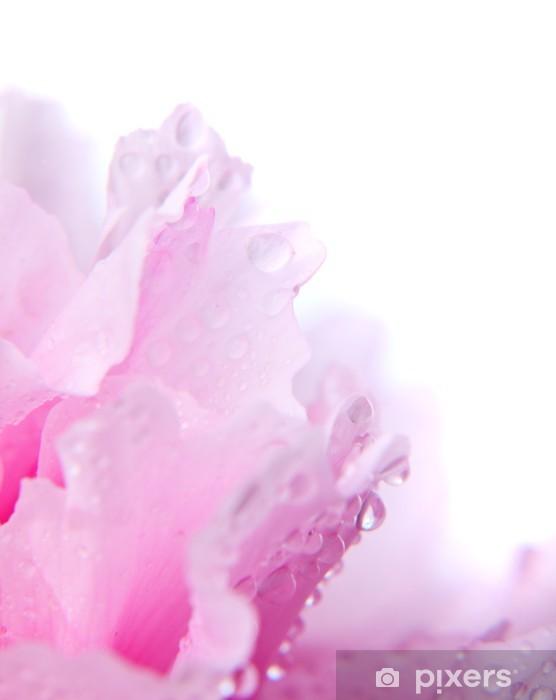 Nálepka Pixerstick Pink pivoňka zblízka - Rostliny