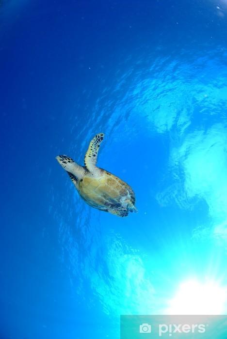Pixerstick Sticker Zeeschildpad - Onderwater