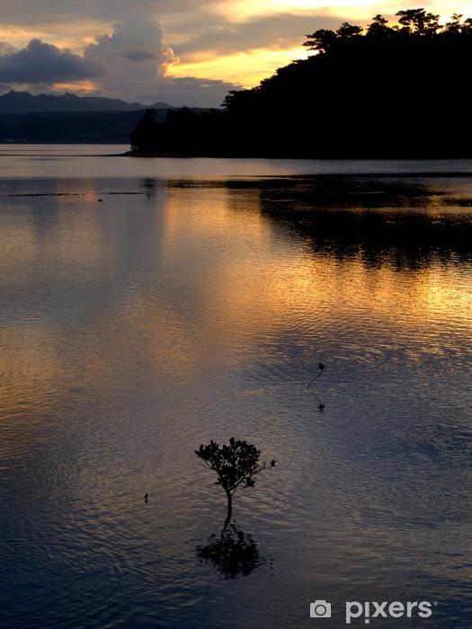 Fototapeta winylowa Mangrowe - Religie