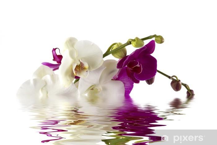 Sticker Pixerstick Orchids - Thèmes