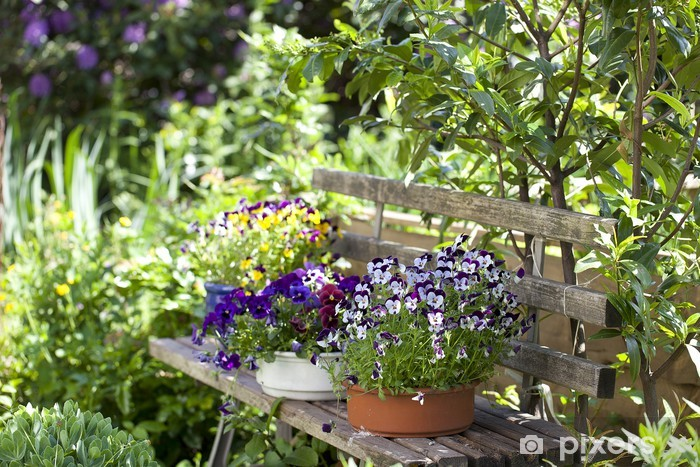 Vinyl-Fototapete Holzbank mit Blumentöpfen in einem wilden Garten. - Private Gebäude